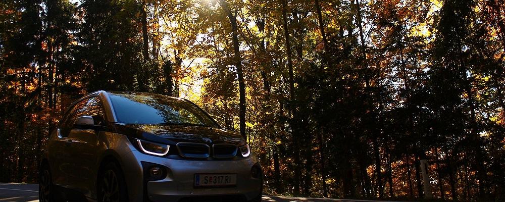 auto-elettrica-bosco