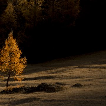 1 - La prima lama di luce che taglia il buio della notte