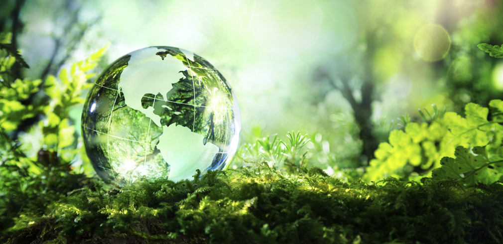 Green Economy Italia