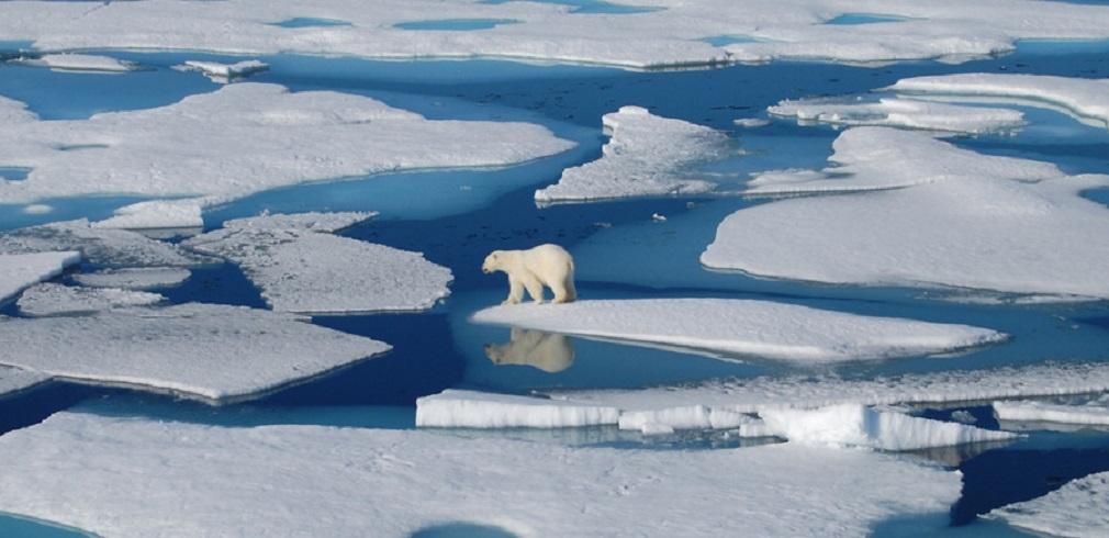ghiacciai che si sciolgono