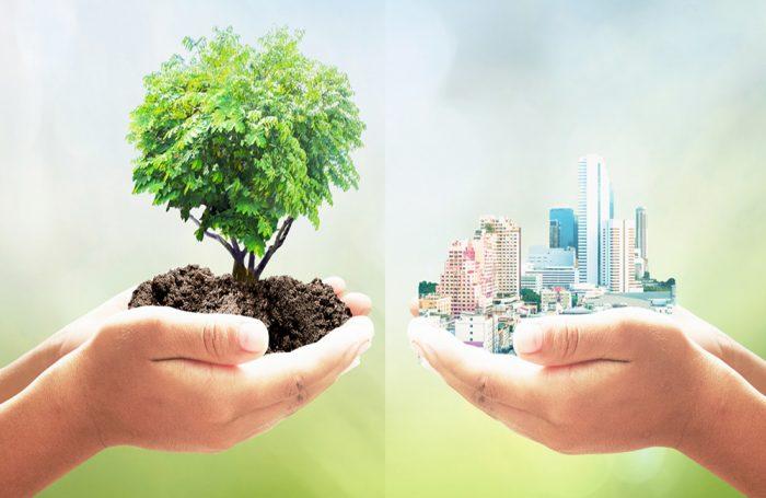 Due mani tengono nel palmo da una parte un albero e dall'altra una città