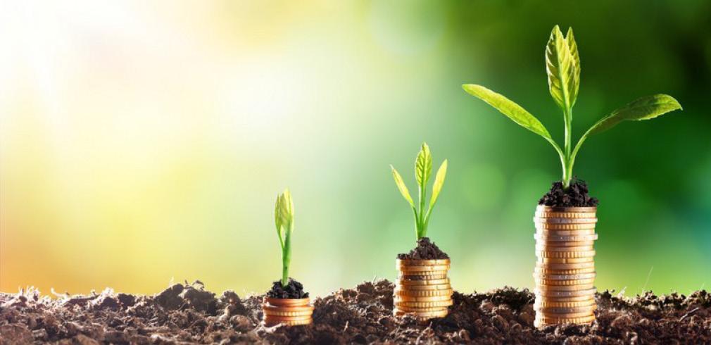 Germogli verdi crescono da delle monete