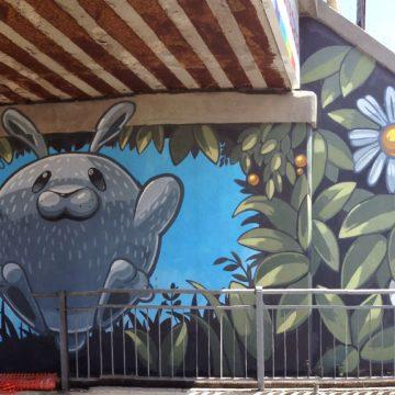 8 - Pao, via Tolemaide, Rimini